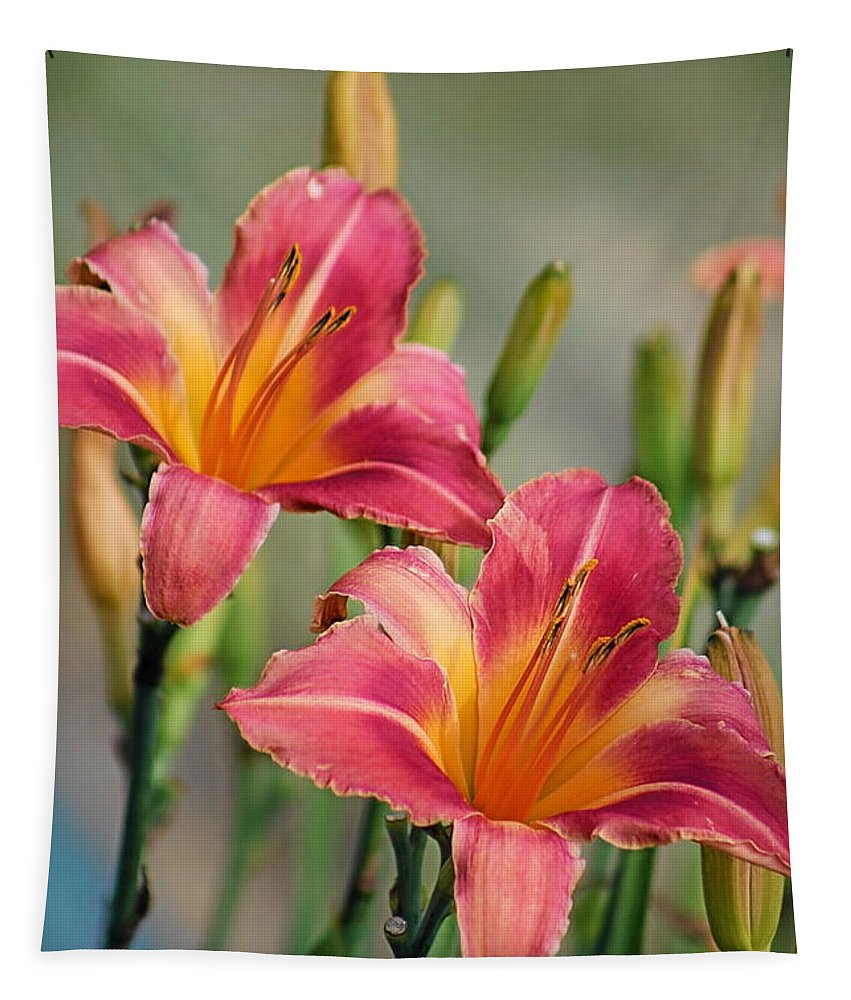 Garden Tapestry featuring the photograph Day Lily Twins by Gayle Miller