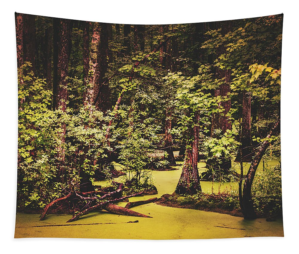 Swamp Tapestry featuring the photograph Decayed Vegetation - Run Swamp, North Carolina by Library Of Congress