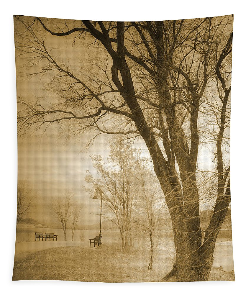 Trees Tapestry featuring the photograph December Glow by Tara Turner