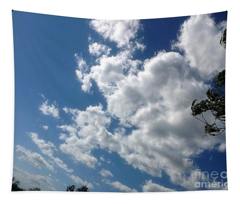 Deep Tapestry featuring the photograph Deep Blue With Lovely Clouds by Debra Lynch