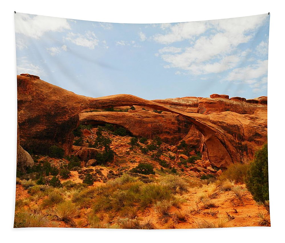 Landscape Tapestry featuring the photograph Delicate Arch by Jeff Swan