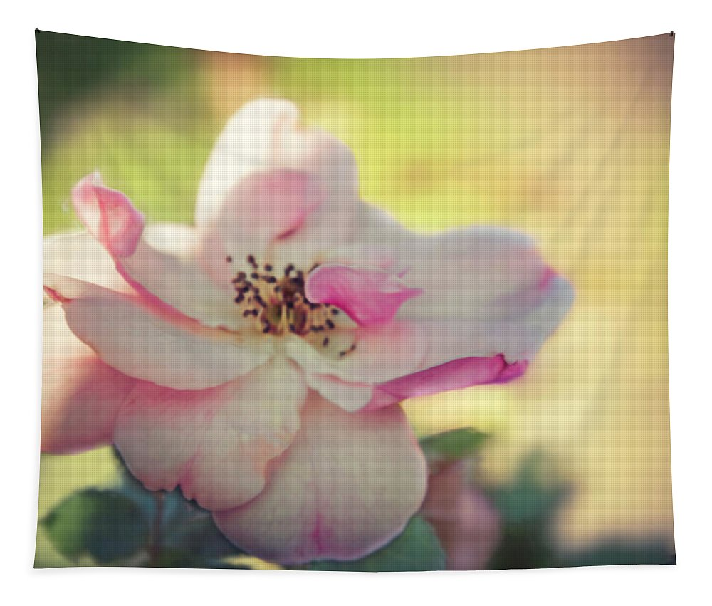 Rose Tapestry featuring the digital art Delicate Petals by Terry Davis