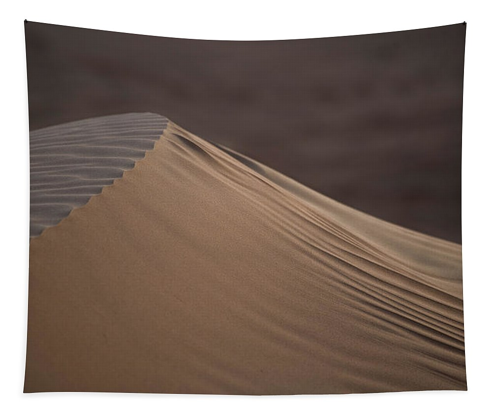 Desert Tapestry featuring the photograph Desert Dawn by Alex Lapidus
