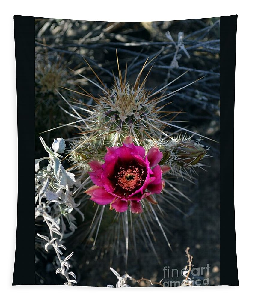 Arizona Tapestry featuring the photograph Desert Flower by Fred Les