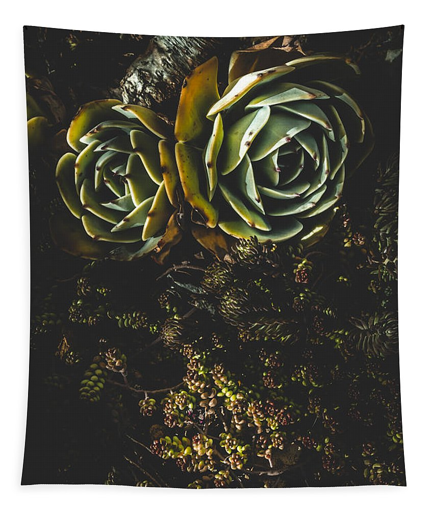 Above Tapestry featuring the photograph Desert Flowers by Jorgo Photography - Wall Art Gallery