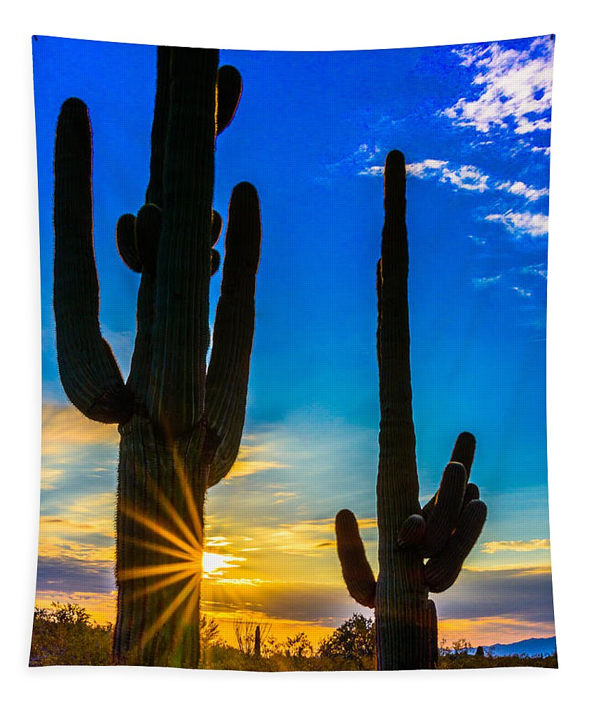 Sunstar Tapestry featuring the photograph Desert Morning Sunrise by Daniel Dean