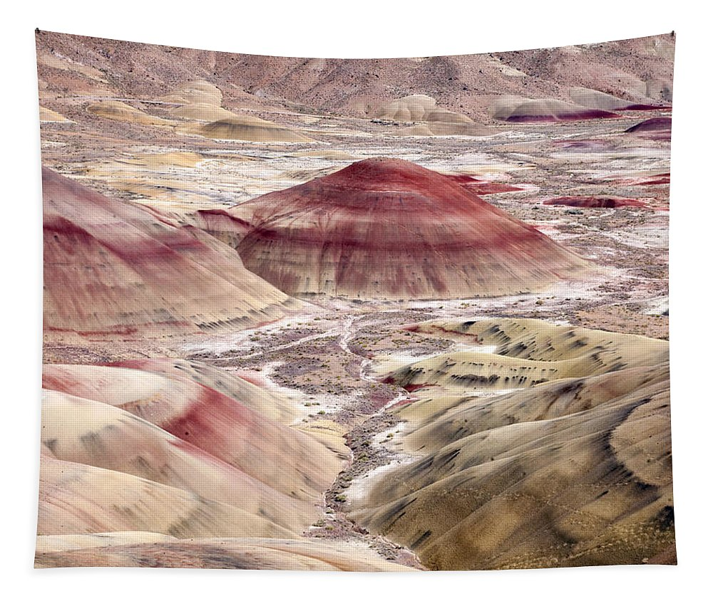 Painted Hills Tapestry featuring the photograph Desert Palette by Mike Dawson