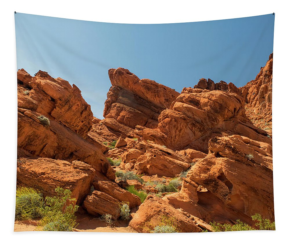 Landscape Tapestry featuring the photograph Desert Paradise by Frank Wilson