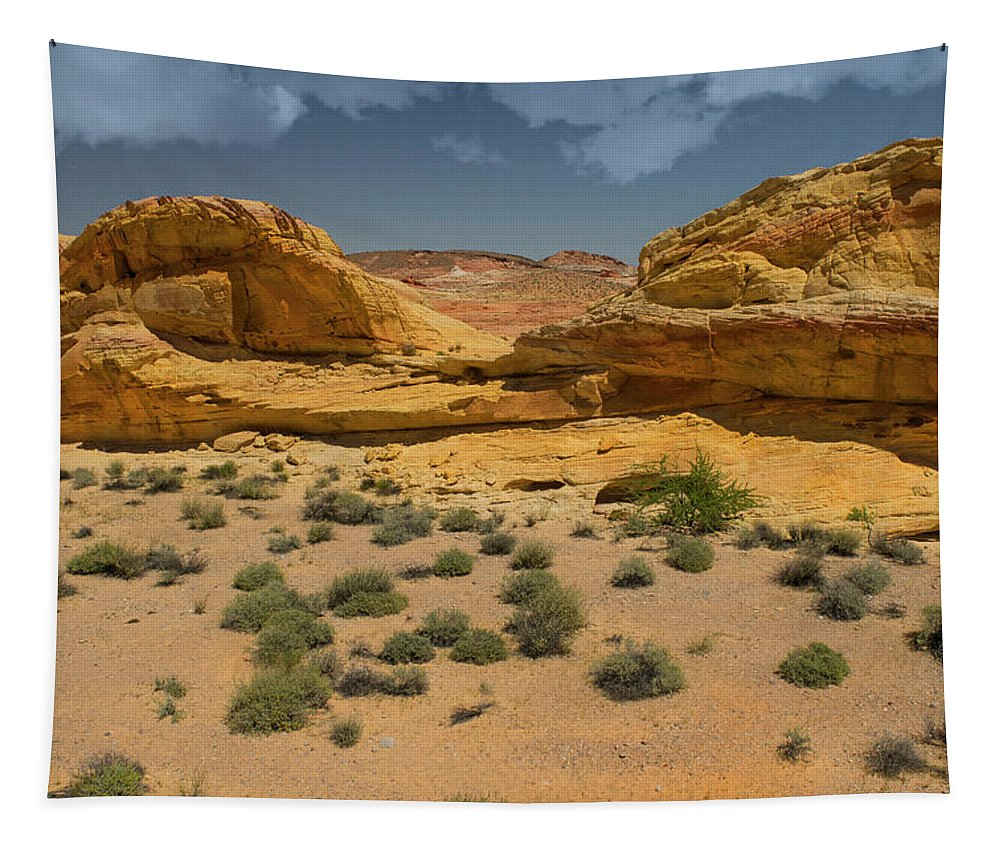 Landscape Tapestry featuring the photograph Desert Sandstone Cliffs Valley Of Fire by Frank Wilson