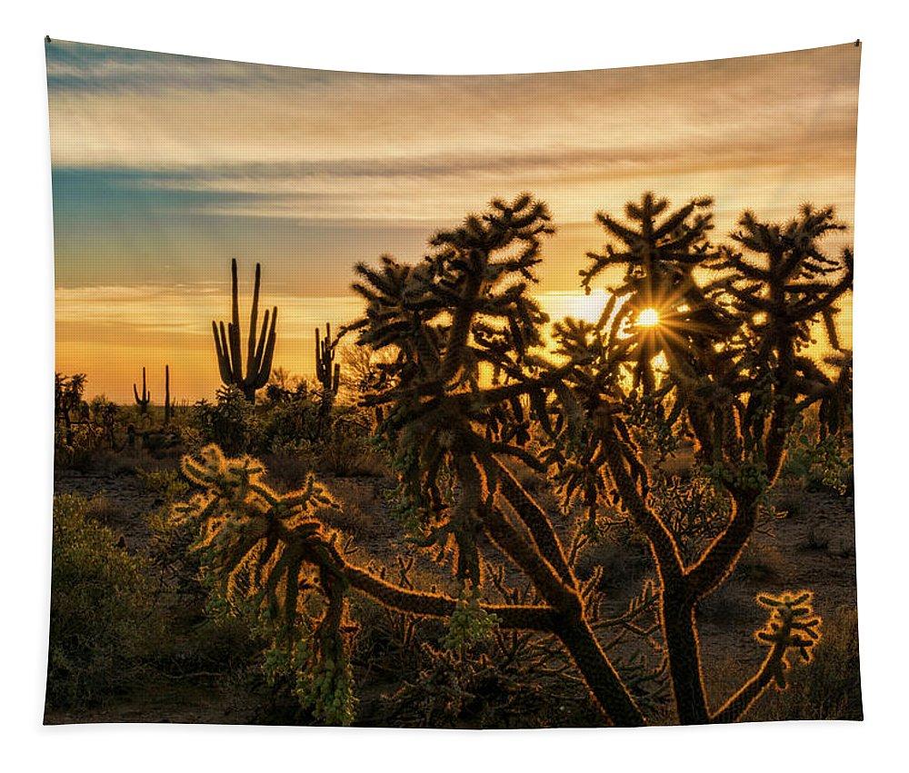 Saguaro Sunset Tapestry featuring the photograph Desert Sunshine Shining Through by Saija Lehtonen