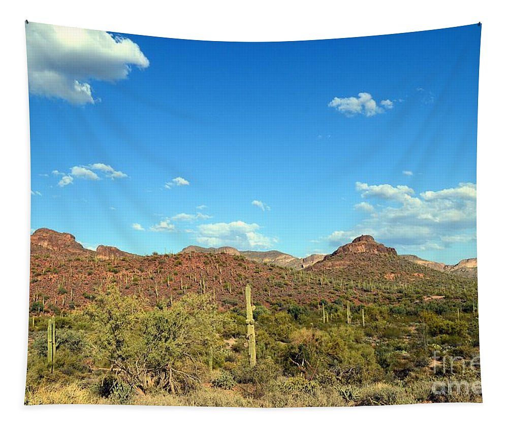 Arizona Tapestry featuring the photograph Desert View 340 by Fred Les