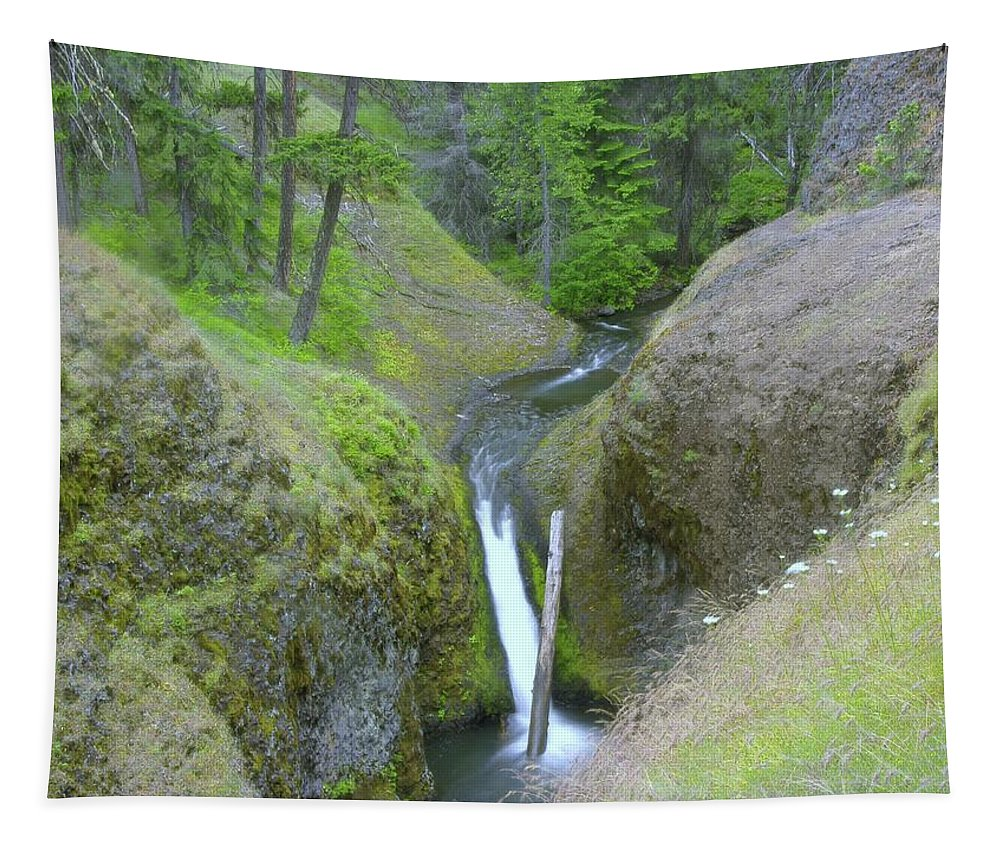 Creeks Tapestry featuring the photograph Devil Creek Falls  by Jeff Swan