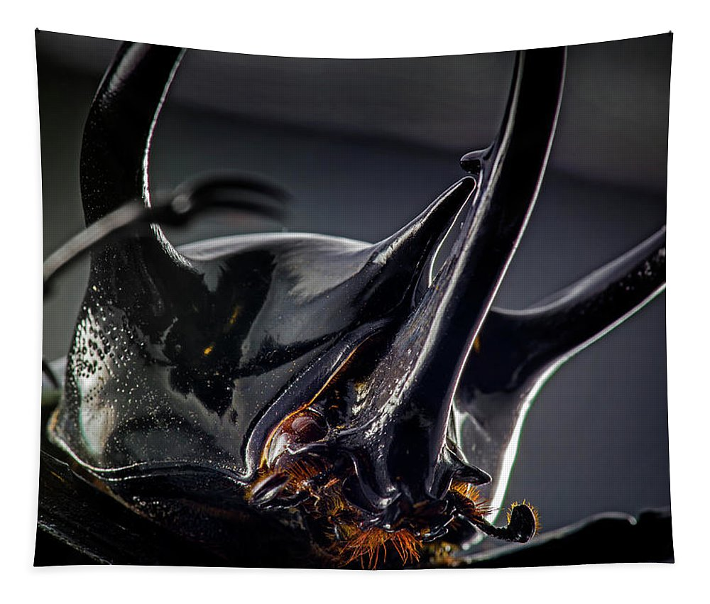 Insects Tapestry featuring the photograph Devil Horns Macro by Robert Storost