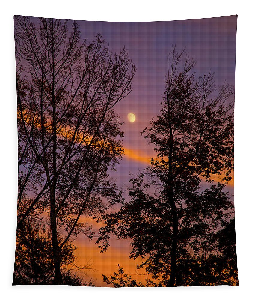 Clouds Of Fire Tapestry featuring the photograph Distant Moon by Karol Livote