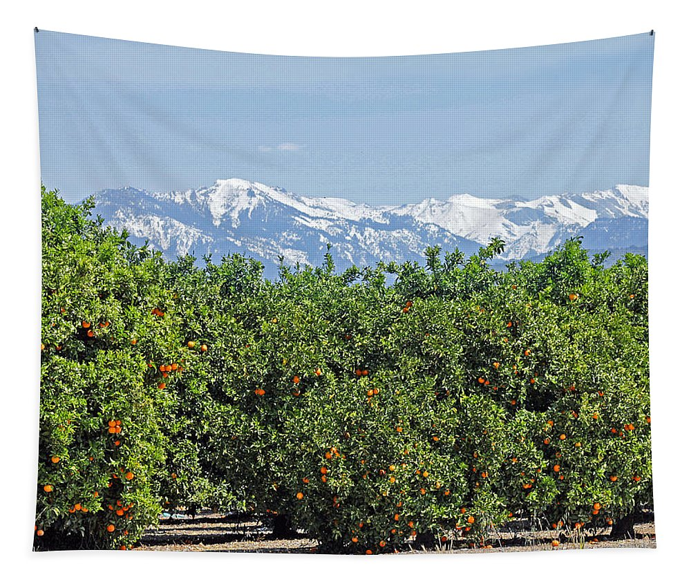 Dm6850e Tapestry featuring the photograph Dm6850-e Orange Grove And The Sierra Nevada Ca by Ed Cooper Photography