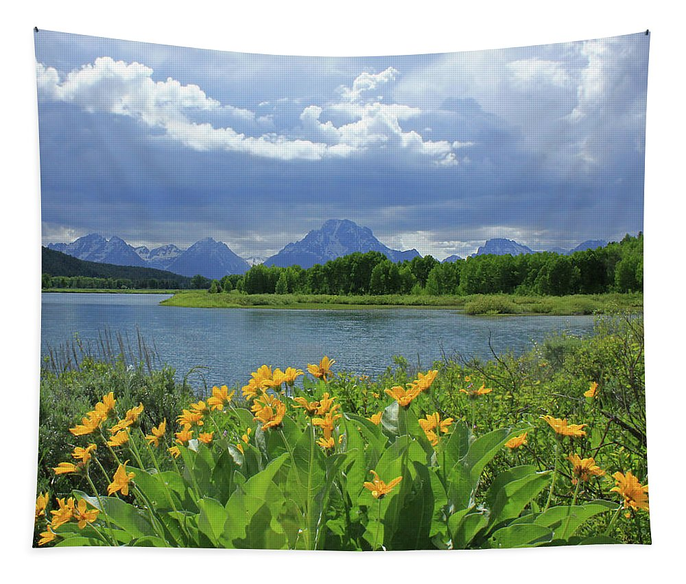 Mt. Moran Tapestry featuring the photograph Dm9235 Mt. Moran From Oxbow Bend by Ed Cooper Photography