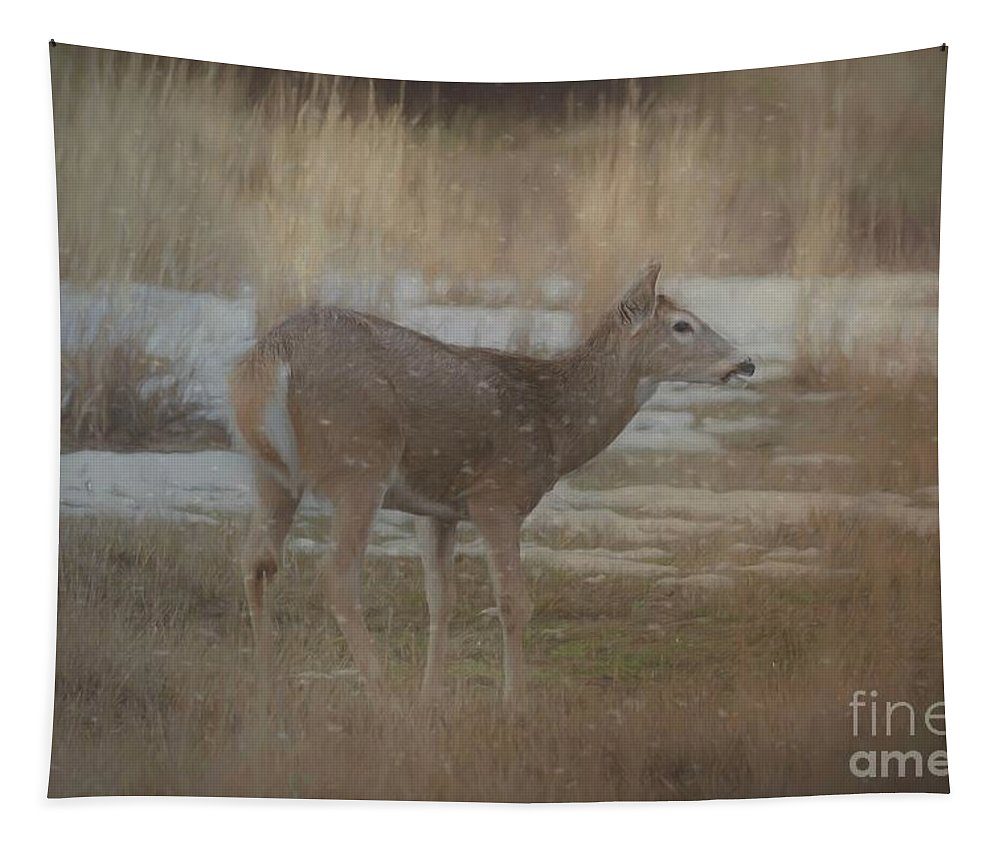 Animal Tapestry featuring the photograph Doe In The Snow by Teresa Wilson