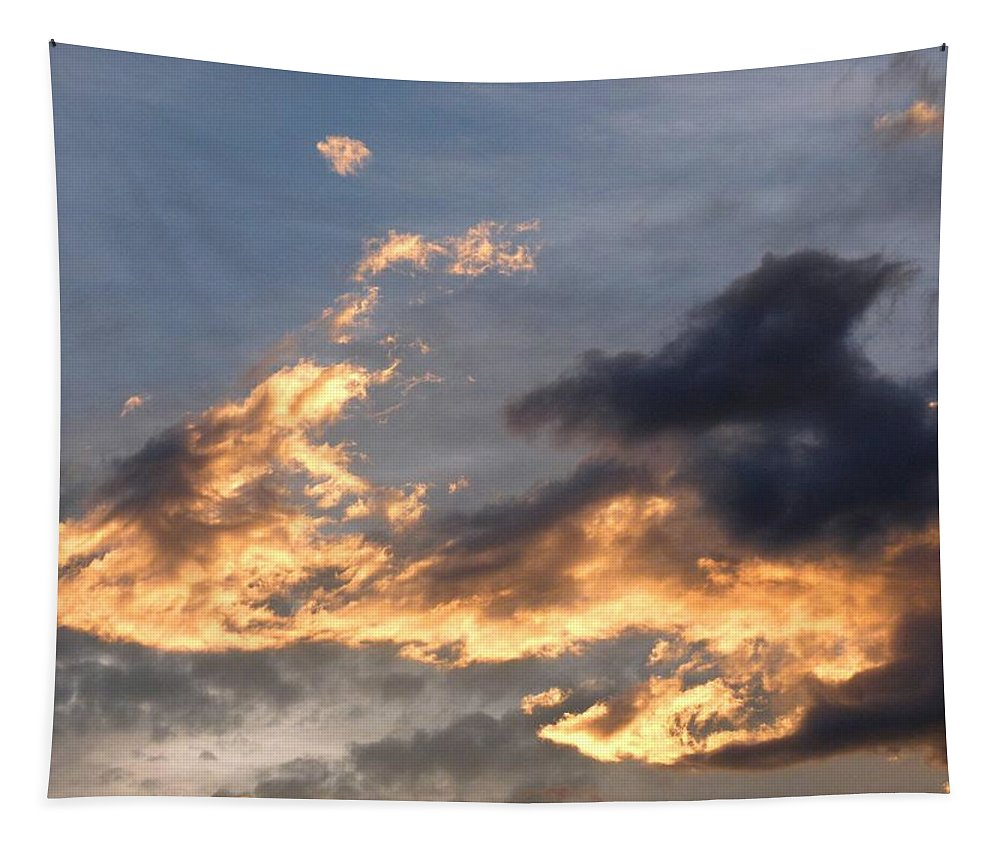 Dog Race Cloudscape 1 Tapestry featuring the photograph Dog Race Cloudscape 1 by Will Borden