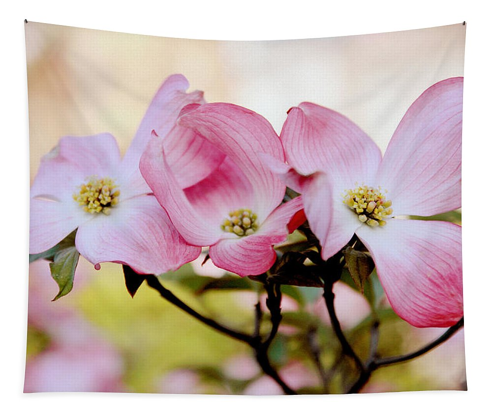 Dogwood Tapestry featuring the photograph Dogwood Dance by Jessica Jenney