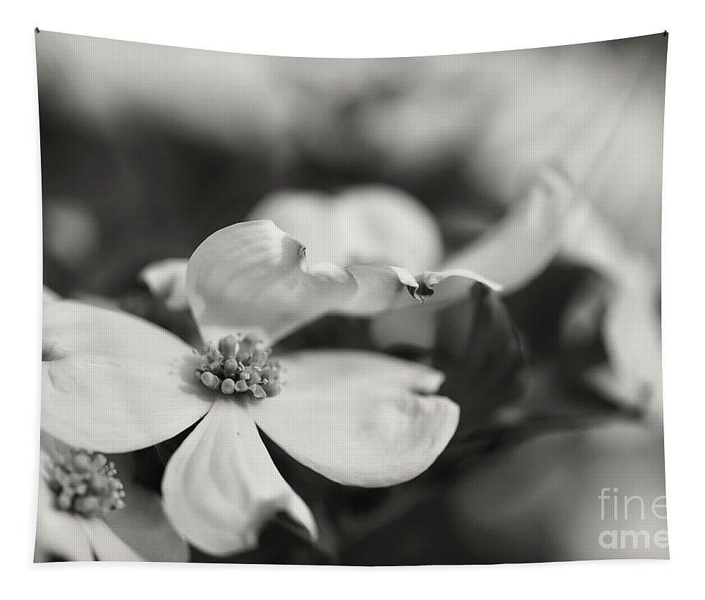 Dogwood Tapestry featuring the photograph Dogwoods In Black And White by Lois Bryan