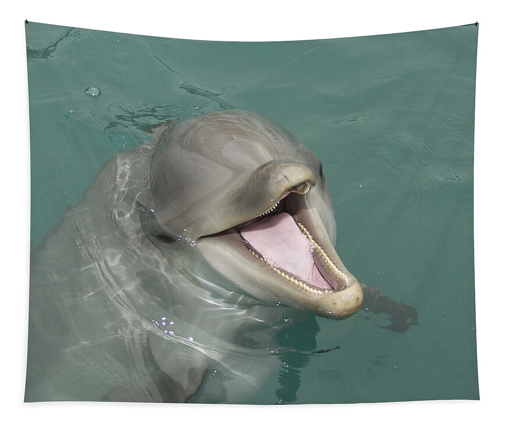 Dolphin Tapestry featuring the painting Dolphin by Sean M