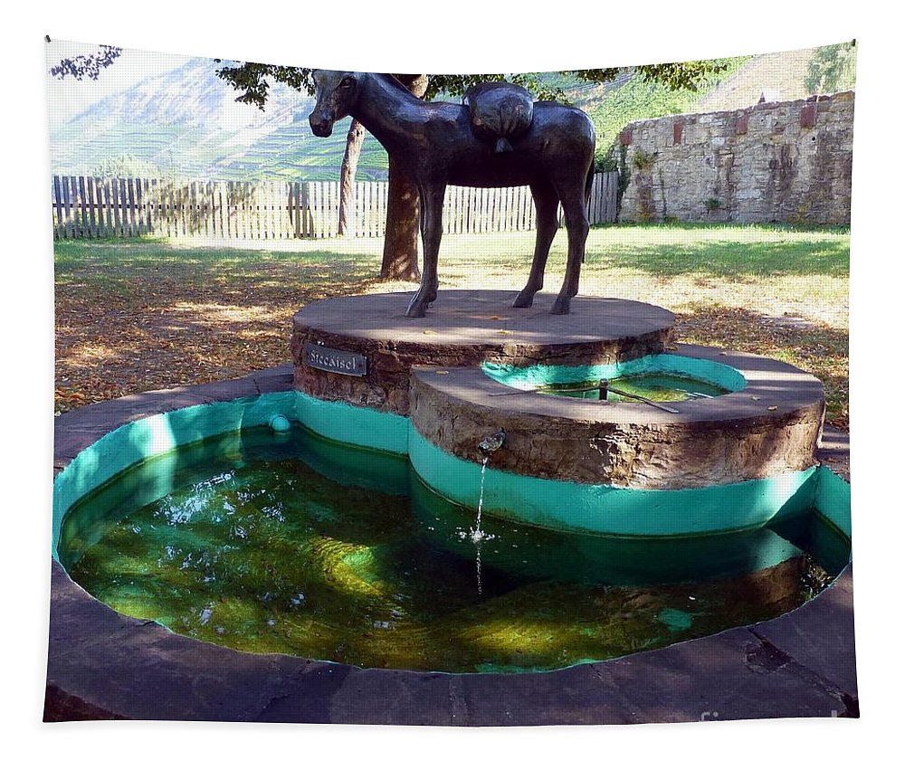 Donkey Tapestry featuring the photograph Donkey Fountain by Barbie Corbett-Newmin