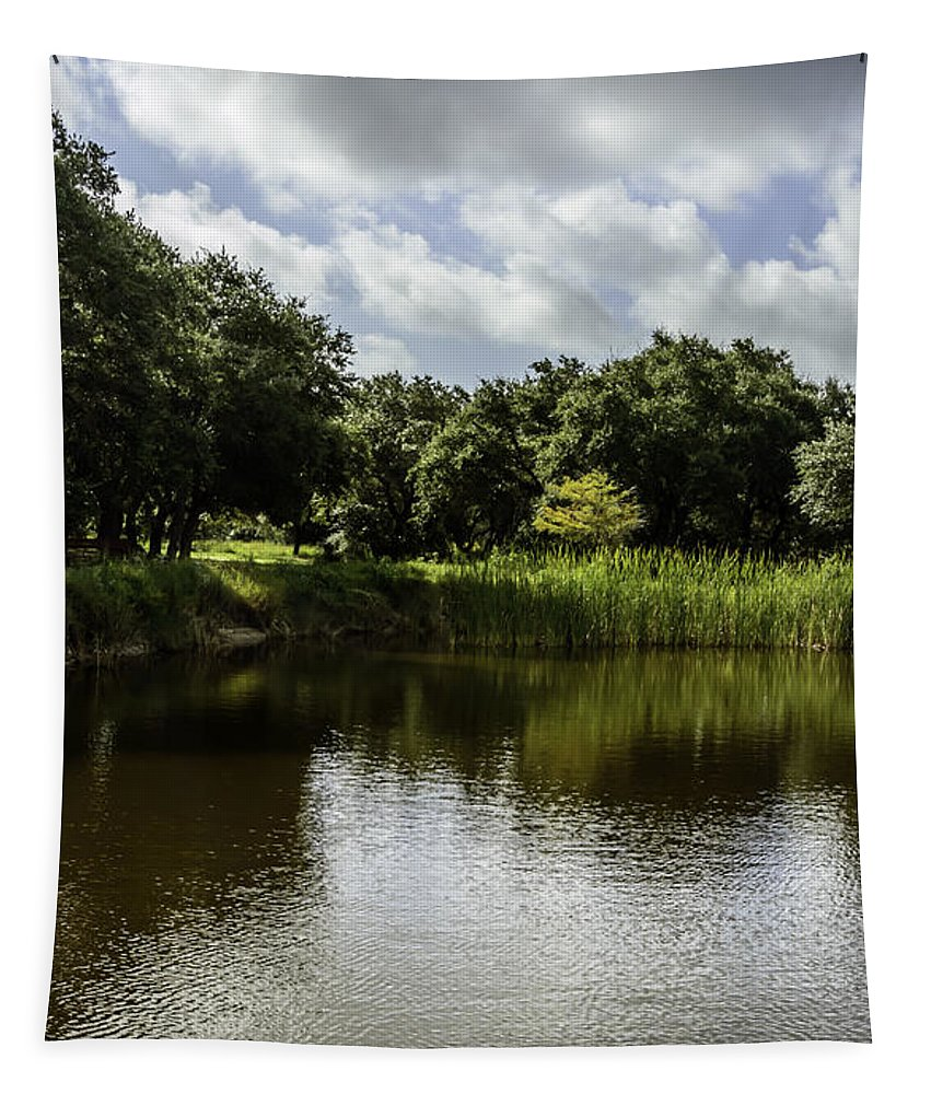 Pond Tapestry featuring the photograph Double Trouble by Leticia Latocki