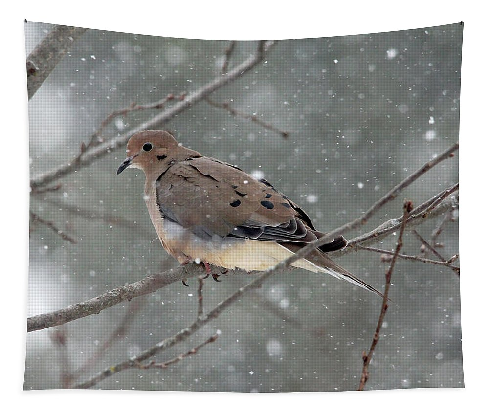 Doves Tapestry featuring the photograph Dove In The Snow by Debbie Oppermann