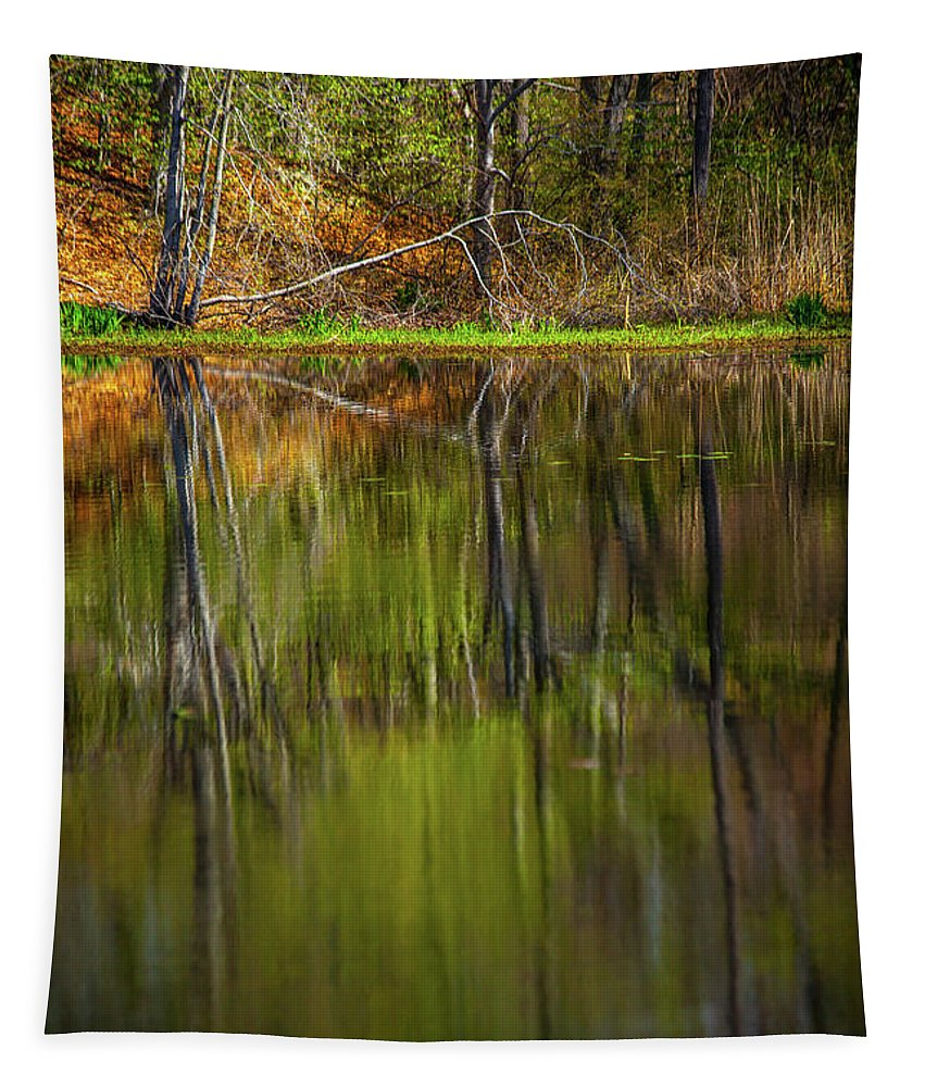 Spring At The Pond Tapestry featuring the photograph Down At Pecks Pond by Karol Livote