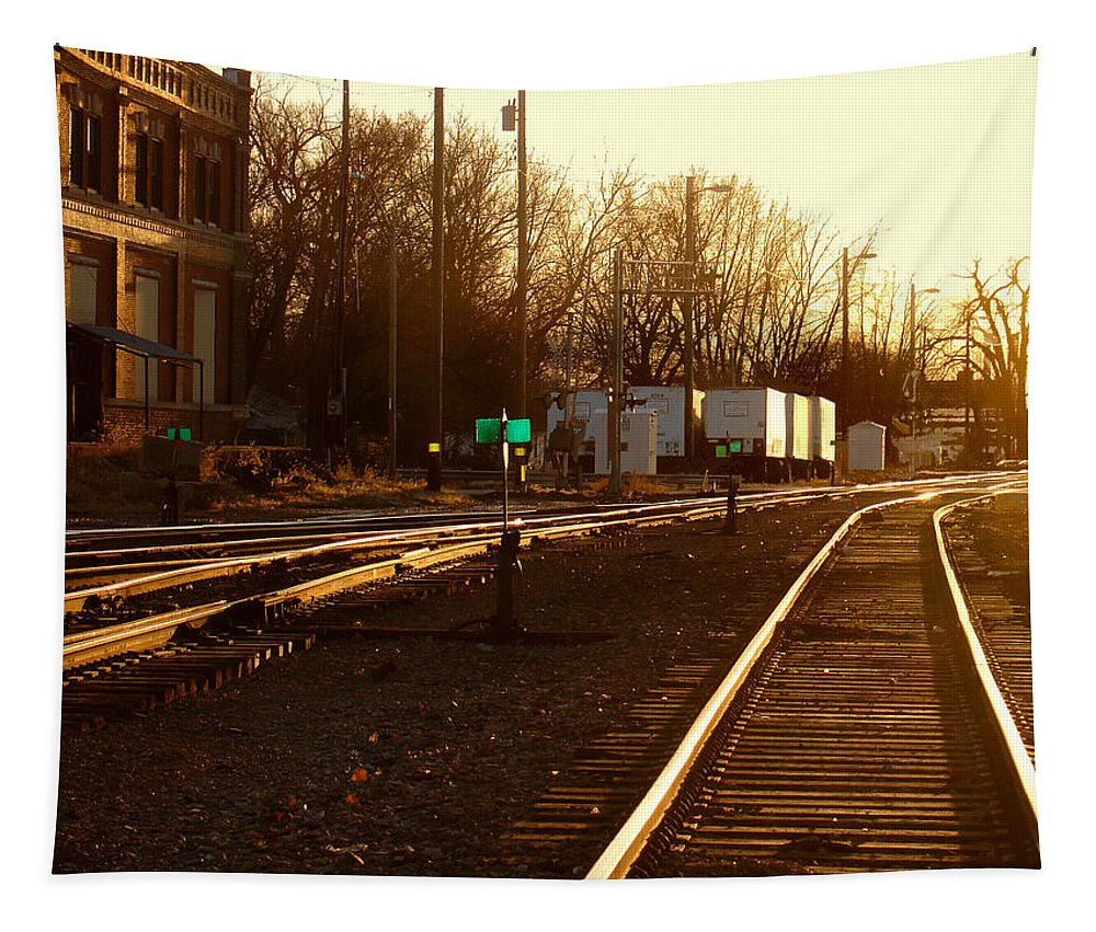Landscape Tapestry featuring the photograph Down the Right Track by Steve Karol