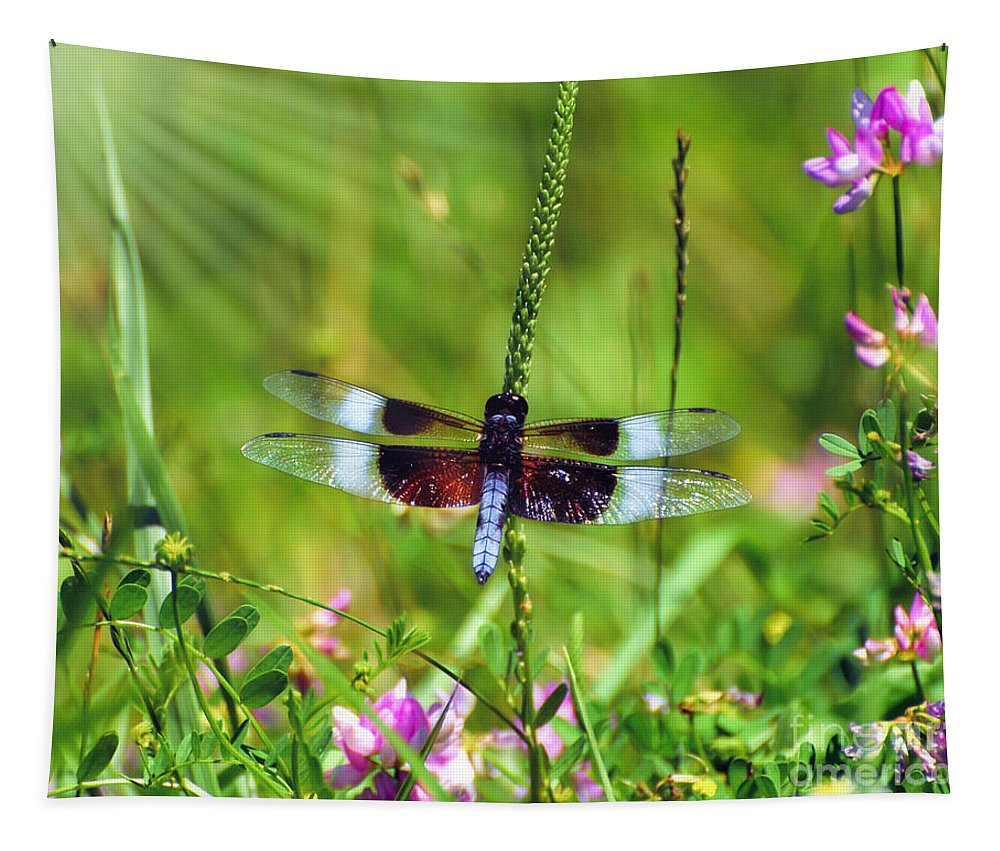 Dragonfly Tapestry featuring the photograph Dragonfly Delight by Kerri Farley