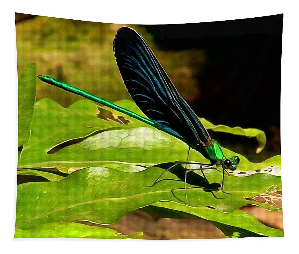 Dragonfly Tapestry featuring the photograph Dragonfly by Sergey Lukashin
