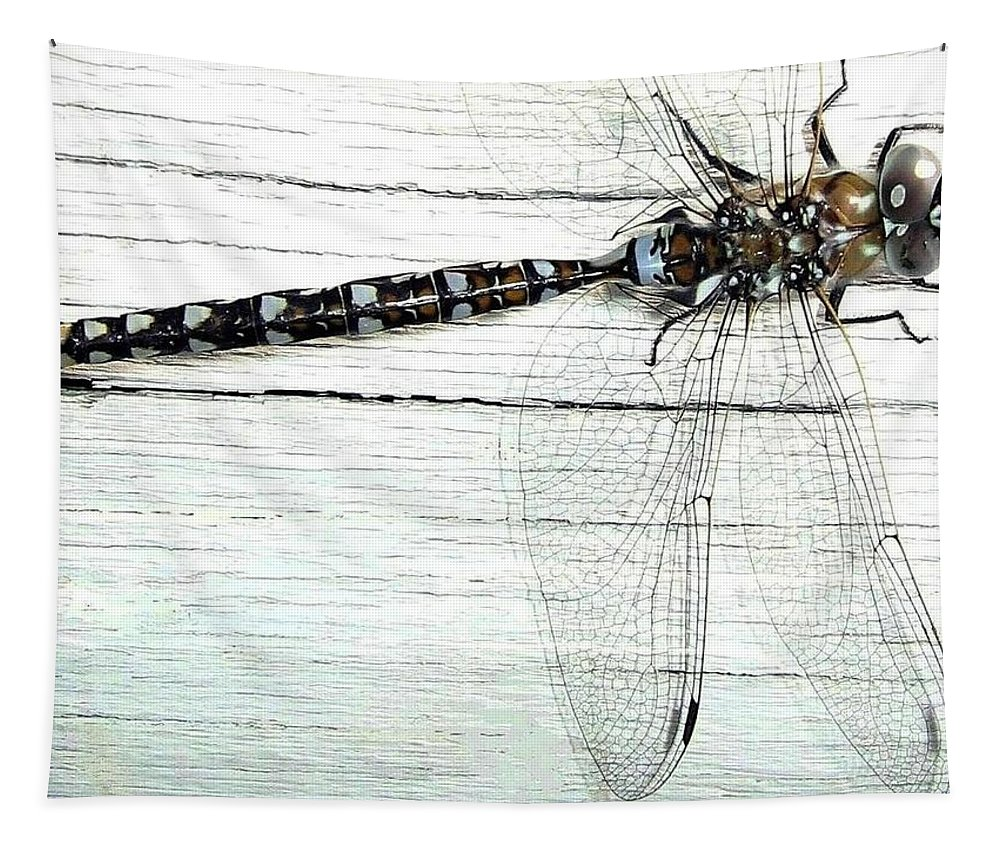 Insect Tapestry featuring the photograph Dragonfly by Will Borden