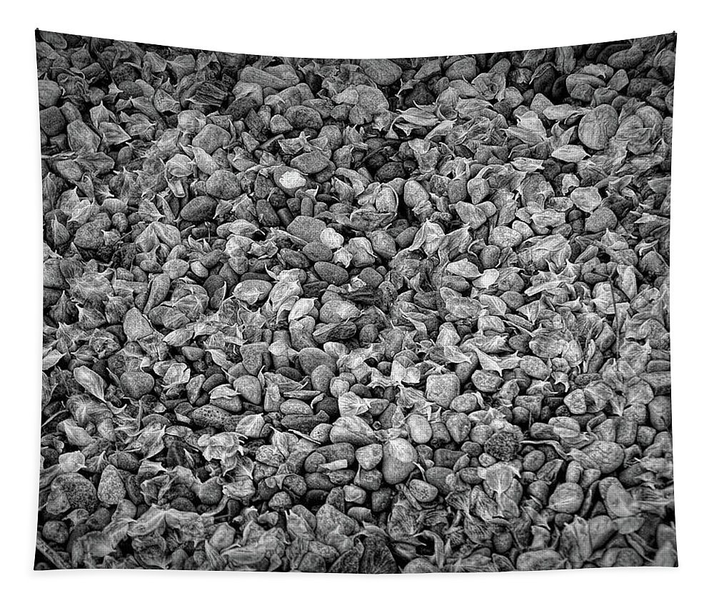 Stone Tapestry featuring the photograph Dramatic Black And White Petals On Stones by Aimee L Maher ALM GALLERY