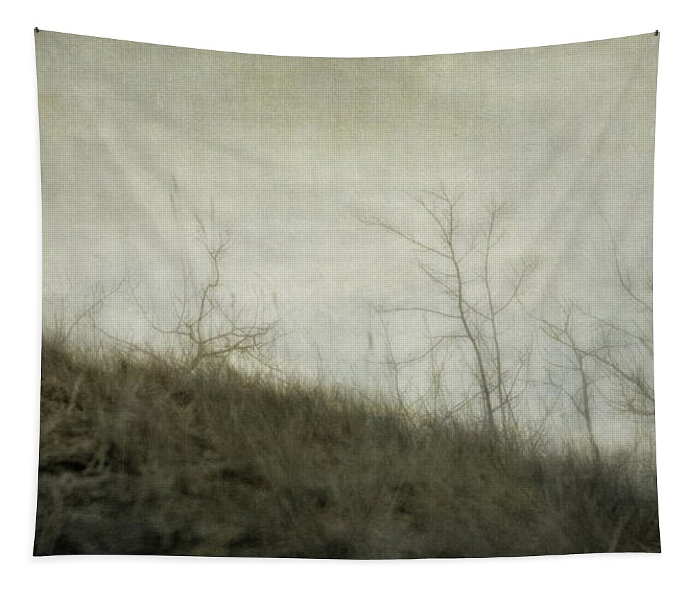 Lensbaby Tapestry featuring the photograph Dream 5 by Priska Wettstein