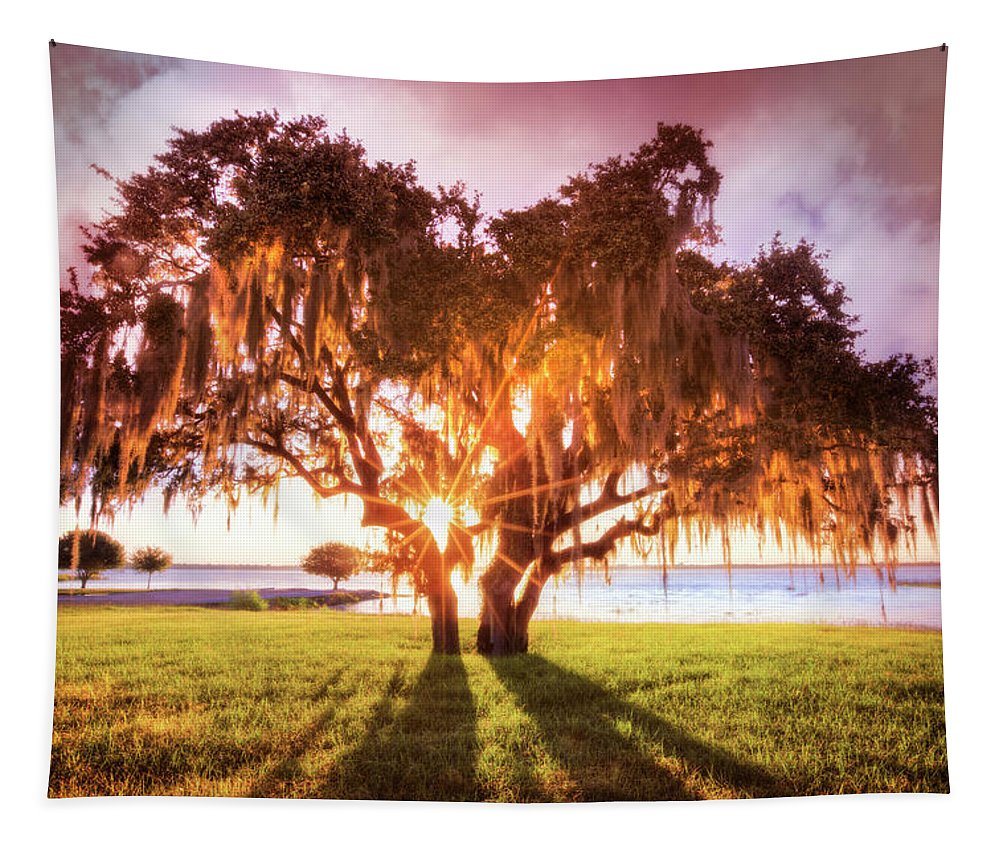 Clouds Tapestry featuring the photograph Dreaming At Sunrise by Debra and Dave Vanderlaan