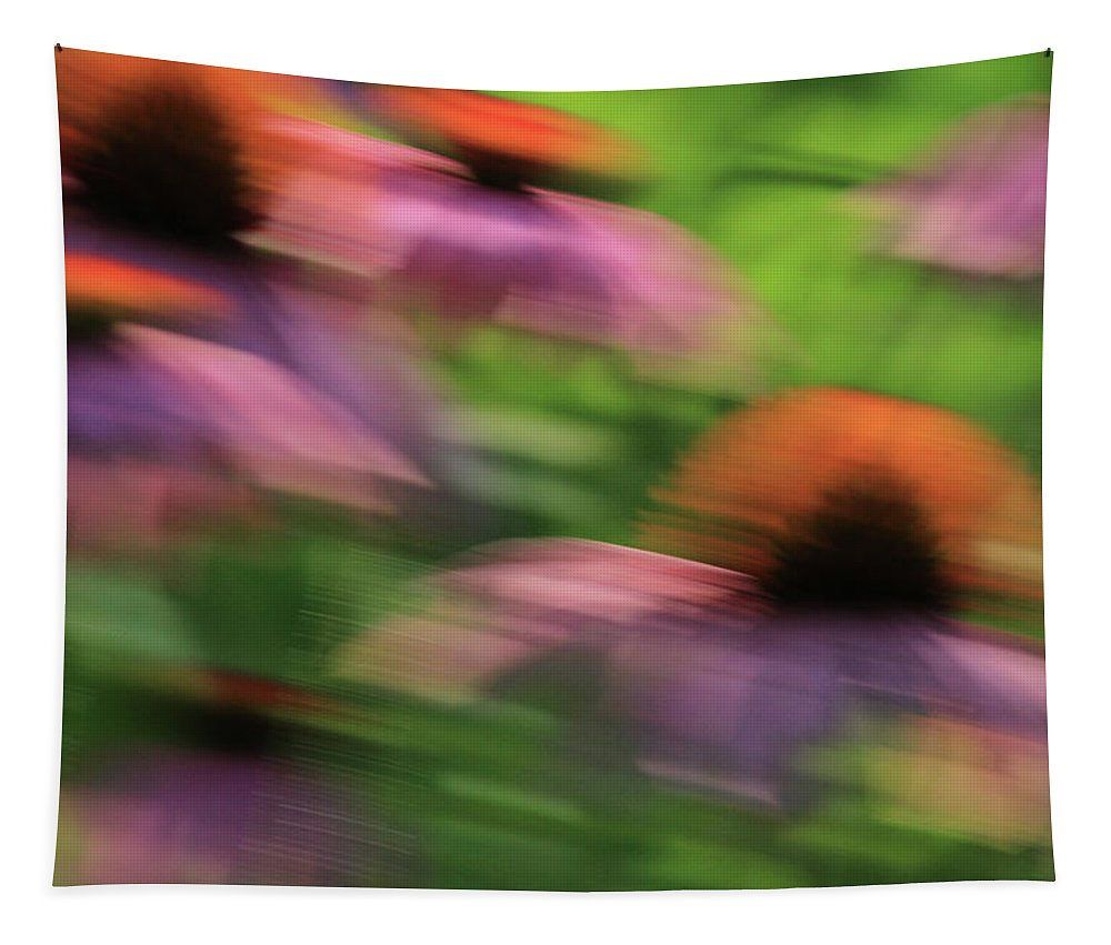 Coneflowers Tapestry featuring the photograph Dreaming Of Flowers by Karol Livote