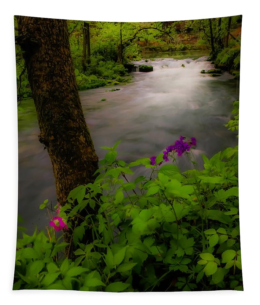 Missouri Ozarks Tapestry featuring the photograph Dreamland by Lynn Sprowl