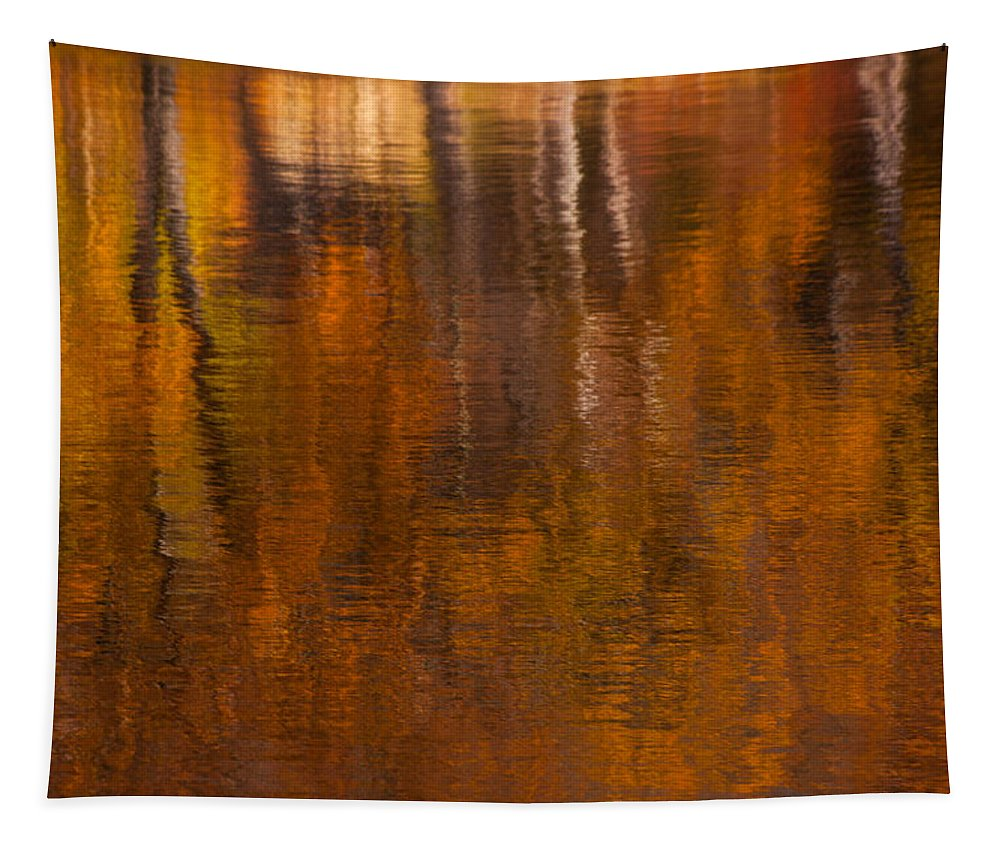 Reflections Tapestry featuring the photograph Dreamy Autumn by Karol Livote