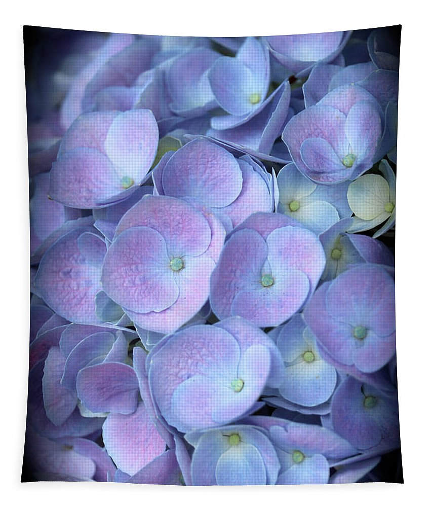 Hydrangea Tapestry featuring the photograph Dreamy Hydrangea In Purple And Blue by Carol Groenen