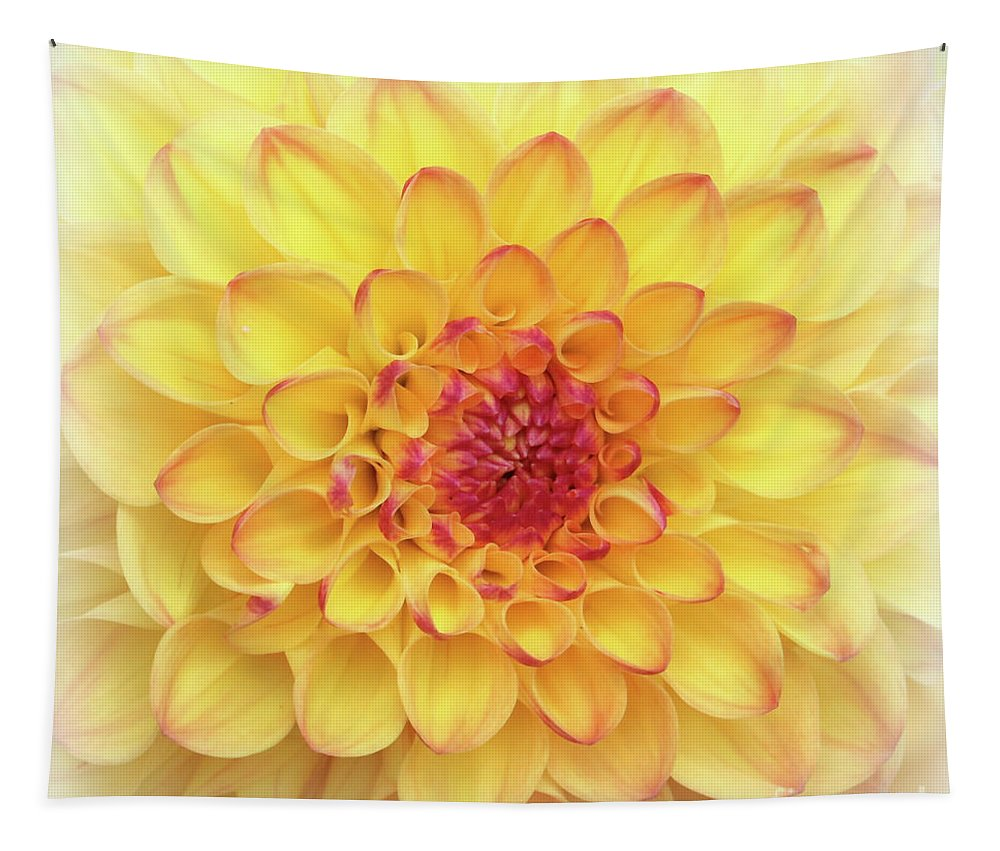 Dahlia Tapestry featuring the photograph Dreamy Yellow Dahlia by Carol Groenen