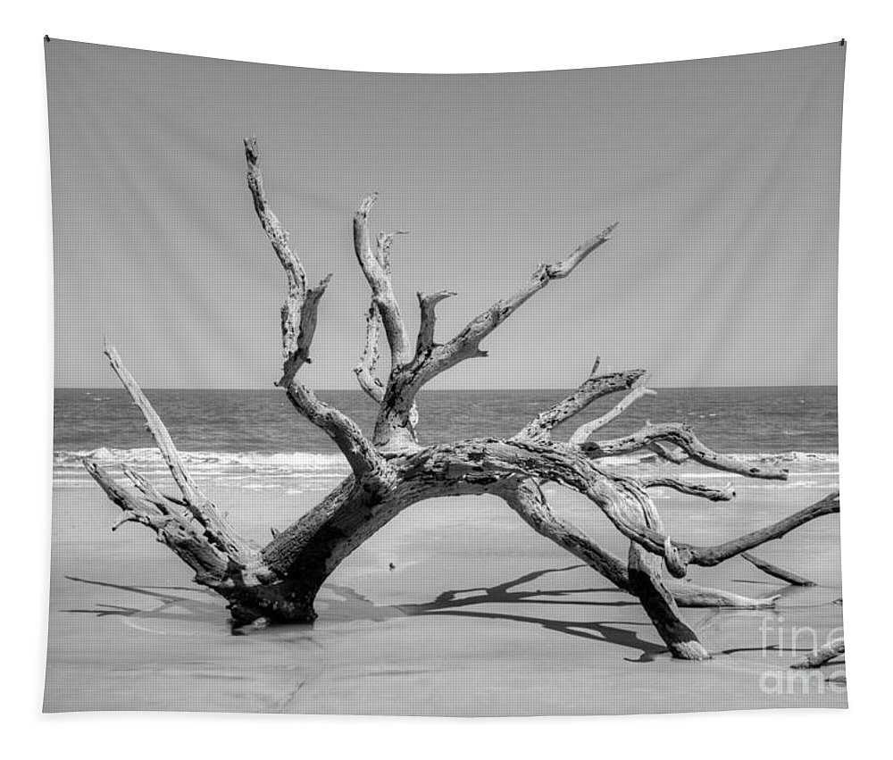 Beach Tapestry featuring the photograph Driftwood Beach In Black And White by Linda Covino