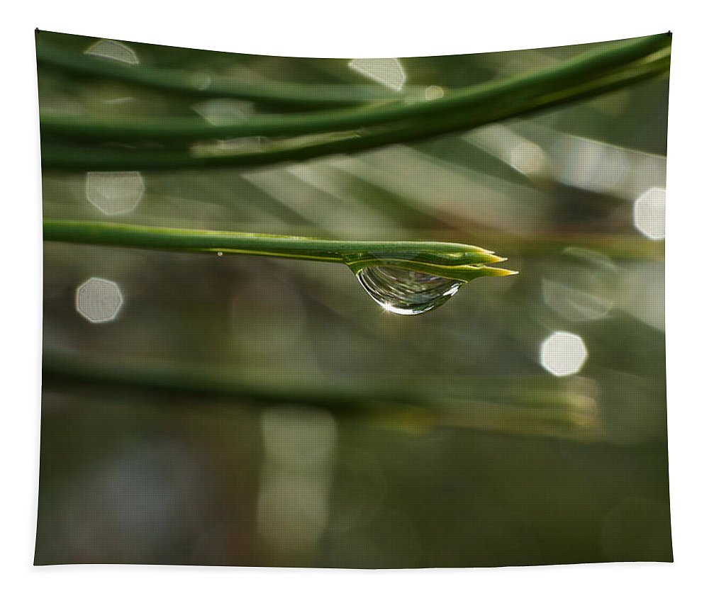 Water Tapestry featuring the photograph Droplet by Jeff Swan