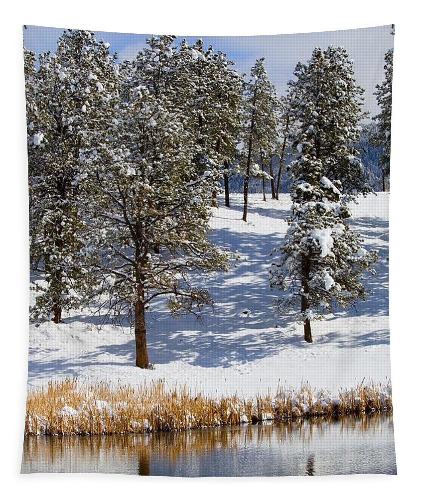 Pond Tapestry featuring the photograph Duck Pond In Colorado Snow by Steve Krull