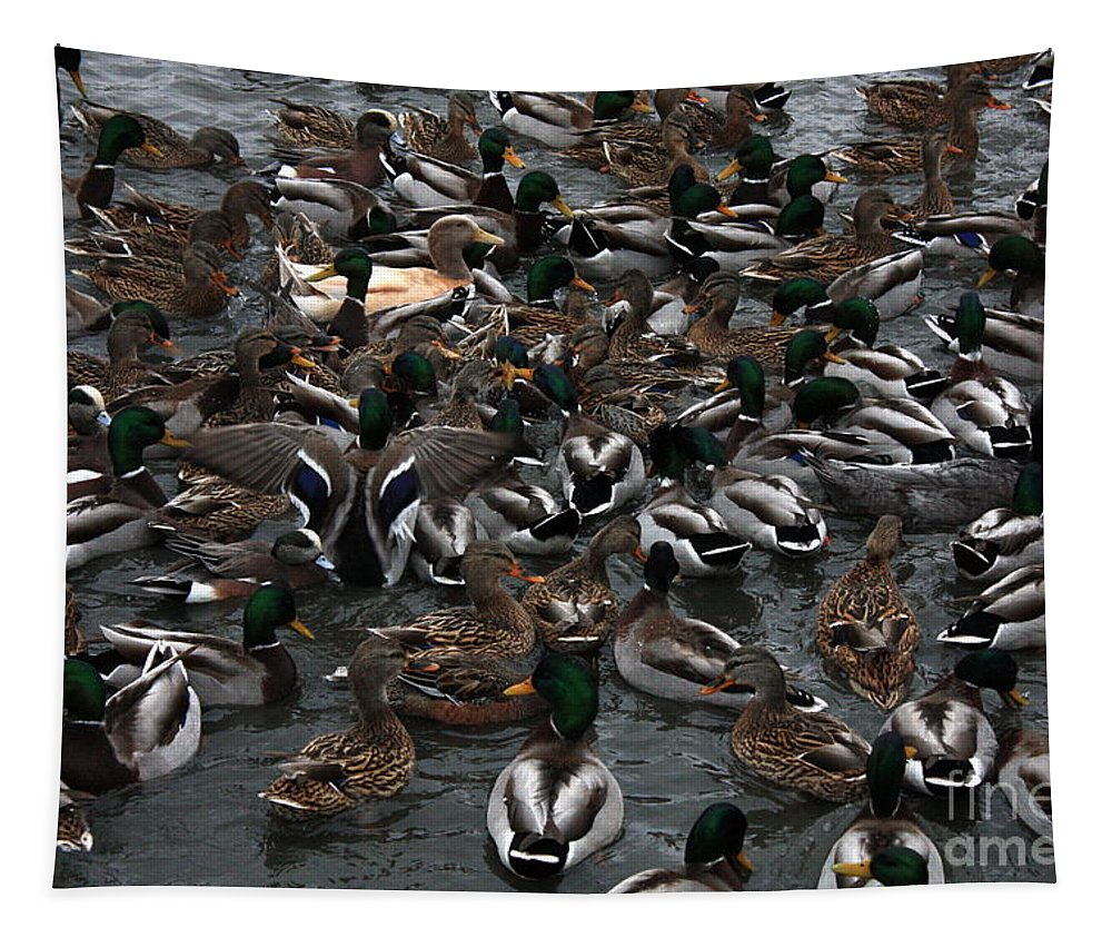 Duck Tapestry featuring the photograph Duck Soup by Carol Groenen
