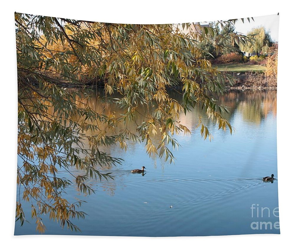 Autumn Pond Tapestry featuring the photograph Ducks On Peaceful Autumn Pond by Carol Groenen
