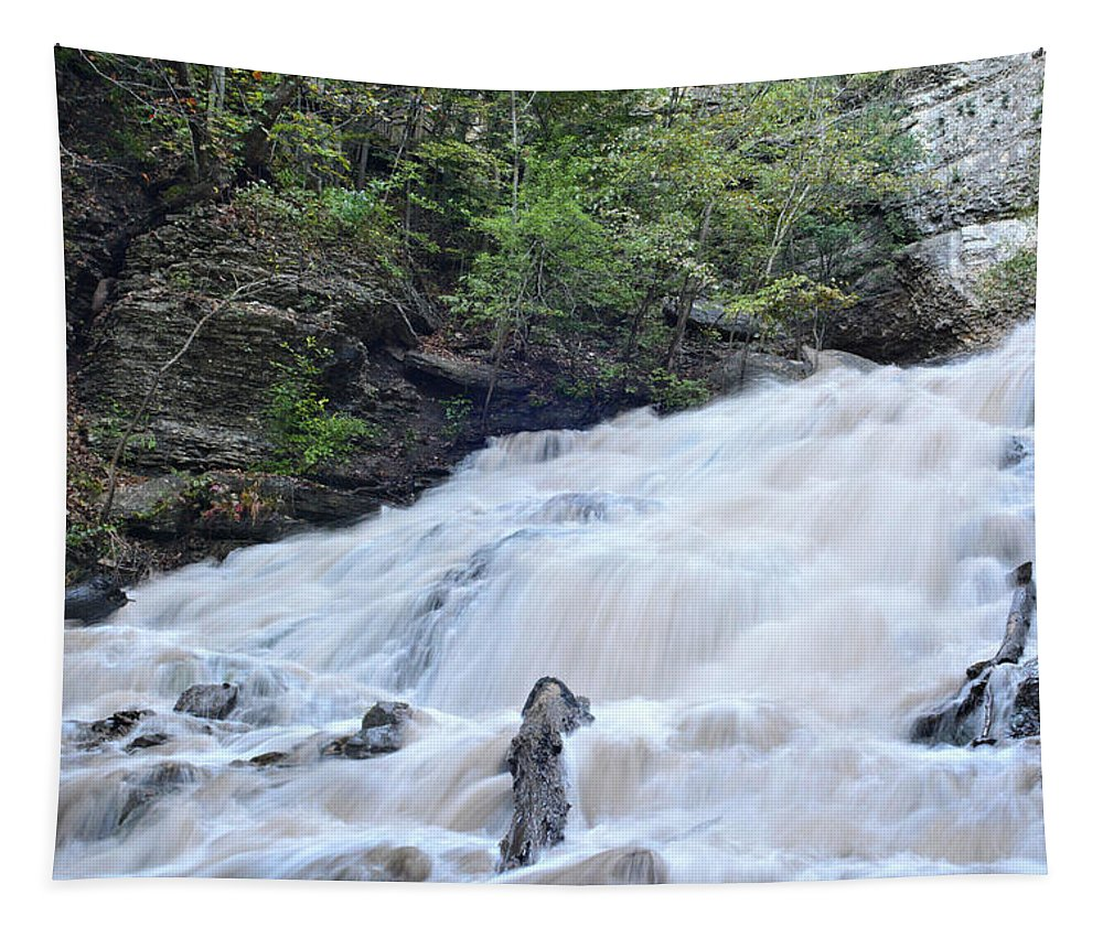 Water Tapestry featuring the photograph Dunnings Falls by Bonfire Photography