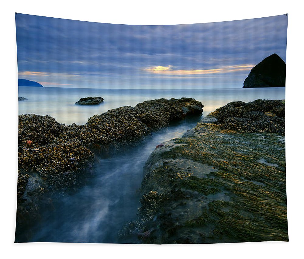 Haystack Rock Tapestry featuring the photograph Dusk At Kiwanda by Mike Dawson