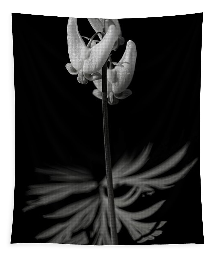 Dale Kauzlaric Tapestry featuring the photograph Dutchman's Breeches Black And White by Dale Kauzlaric
