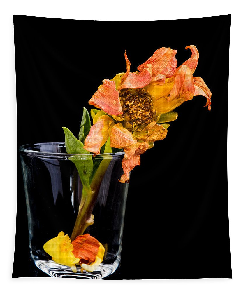 Flower Tapestry featuring the photograph Dying Dahlia Flower by Michalakis Ppalis